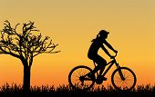 cycling silhouette outdoors vector