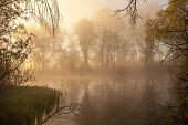 picture of serenity  - serene misty morning on a lakeside summer