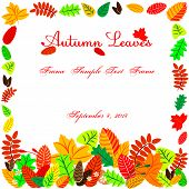 Autumn Leaves In Shape Of Frame