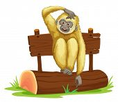 Illustration of a gibbon sitting on a log