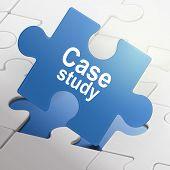 Case Study On Blue Puzzle Pieces