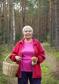Woman Found Mushroom In The Pine Forest