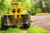 Old Bulldozer In A Forest