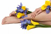 stock photo of nail salon  - Pedicured feet manicured hands and aromatic flowers in a spa - JPG
