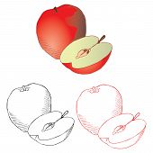 apple drawing in different styles