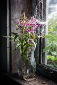 Wildflowers On The Old Window Sill