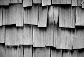 Cedar Shakes Pattern