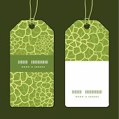 Vector abstract green natural texture vertical stripe frame pattern tags set
