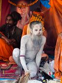 Sadhu (indian Holy Man) At Kumbh Mela Festival In Allahabad, India