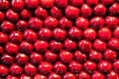stock photo of staples  - fresh cherries are stapled in pattern at the market - JPG