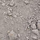 Dried mud soil fragment