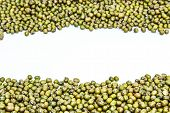 image of mung beans  - the photo Mung bean on white background - JPG