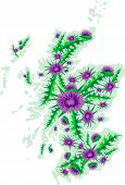 Vector Image Map Of Scotland With Thistle Flowers.eps