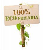 Постер, плакат: 100% Экологически дружественных зеленый знак