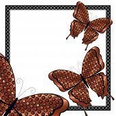 Three Copper and Black Butterflies