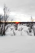 Sunset In Finland  Over Snowscape