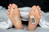 stock photo of deceased  - Deceased Person Covered In A Sheet With A Toe Tag