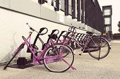 Pink Bicycles