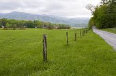 stock photo of cade  - Country road in Cades Cove Great Smoky Mountains National Park - JPG