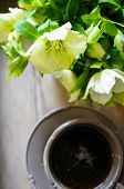 picture of helleborus  - Helleborus flowers in a vase and cup of tea on the old table - JPG