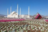 Grand Mosque In Fujairah, UAE
