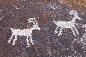 Grapvine Canyon Petroglyphs