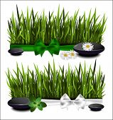 Green Grass With A Bow On A White Background.