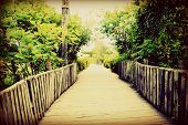 picture of stroll  - Strolling down a spring garden road - JPG
