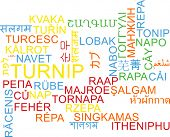 foto of turnips  - Background concept wordcloud multilanguage international many language illustration of turnip - JPG