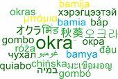 picture of okras  - Background concept wordcloud multilanguage international many language illustration of okra - JPG