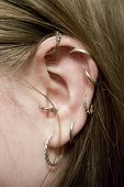 color closeup picture of  lady ear with multiple earrings