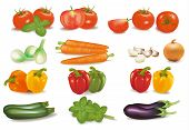 The big colorful collection of vegetables.