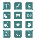 Medical symbols, specialties, human organs and healthcare objects