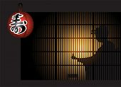 Geisha silhouette with sake behind shoji (sliding doors) and paper lantern