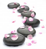 stock photo of flower arrangement  - Spa stones with rose petals on white background - JPG