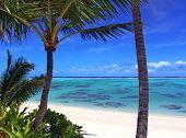 Rarotonga Lagoon