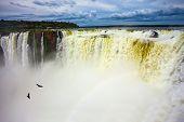 The Devils Throat is the most grandiose part of the Iguazu Falls. The rainy season. Andean condors  poster