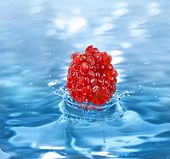 pomegranate fruit seeds falling in a refreshing drink