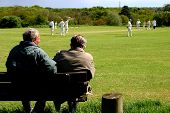 Cricket Spectators