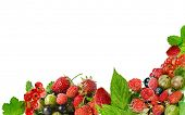 border of fresh berries isolated on white
