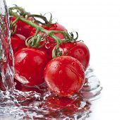 frische Tomaten mit strömendem Wasser
