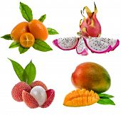 Kumquat , pitahaya dragon, litchi , mango - fresh exotic tropical fruits isolated on white