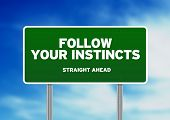 Green Road Sign - seguir tus instintos