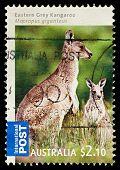 Australia Postage Stamp