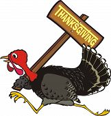 runaway turkey - thanksgiving day