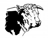 Cow 2 - Retro Clipart Illustration