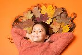Little Girl Small Child Gorgeous Long Hair And Fallen Maple Leaves. Moisturizing Mask. Deep Conditio poster