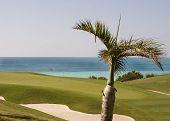 Golf Course in Bermuda