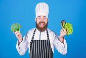 Dieting Concept. Man Wear Hat And Apron Hold Salad. Healthy Nutrition. Bearded Hipster Professional  poster