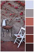 Swatch Color Palette Matching Autumn Colors. Collage Collection Combination Of Autumn Light And Dark poster
